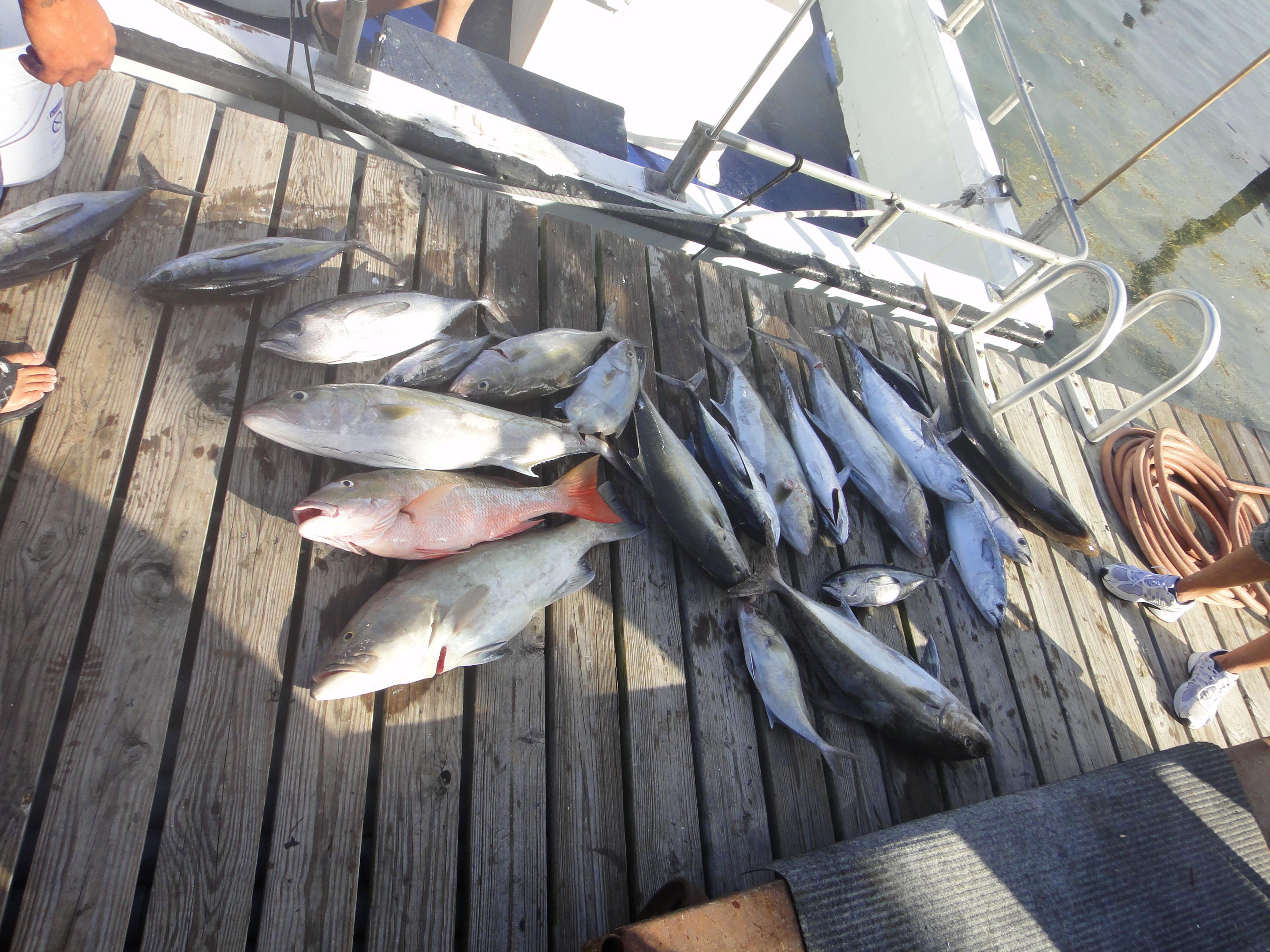 Reward won with captain wayne 12 10 2011 shorebound for Reward fishing fleet