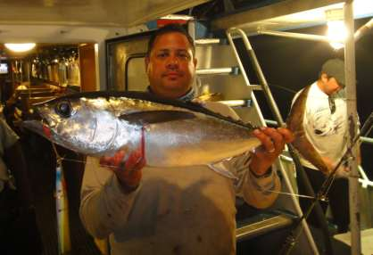 Blackfin Tuna on vertical jig at night