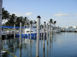 The docks at Haulover Marina