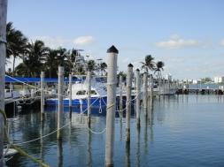 The docks at Haulover Marina