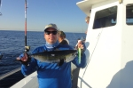 Small Blackfin Tuna