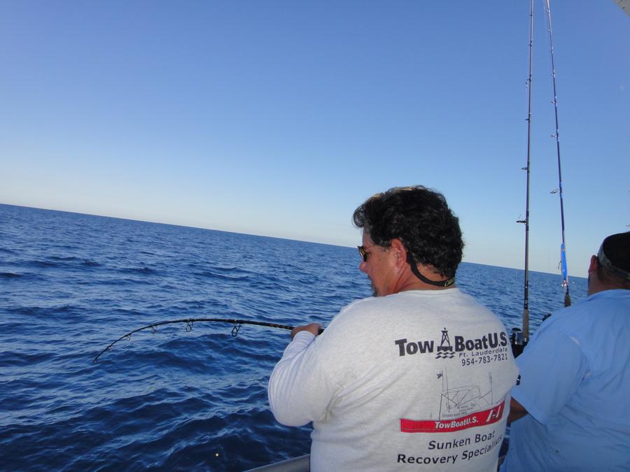 Scamp grouper shorebound adventures for Reward fishing fleet