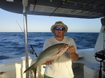 Rory's Yellow Tail Snapper