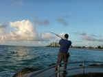 Fighting a snook at Jupiter Inlet Jetty 2