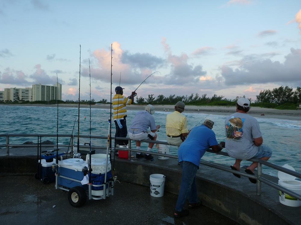 Jetty fishing shorebound adventures for Jupiter inlet fishing