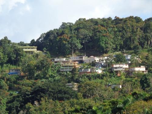 La Marqueza Forest in Guaynabo Puerto Rico