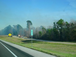 forest fire near highway in Texas
