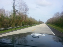 Naples and the Everglades