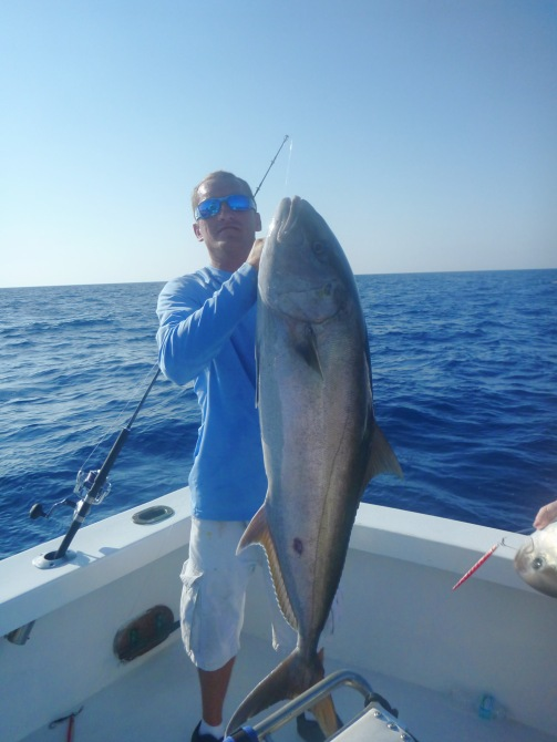 Jimmy Amberjack 2 alone
