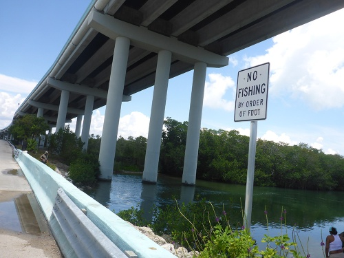 Florida Fishing Bridges42