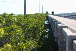 Florida Keys Bridges 099