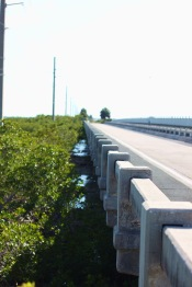 Florida Keys Bridges 100