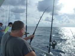 permitchaser fighting a Gag Grouper