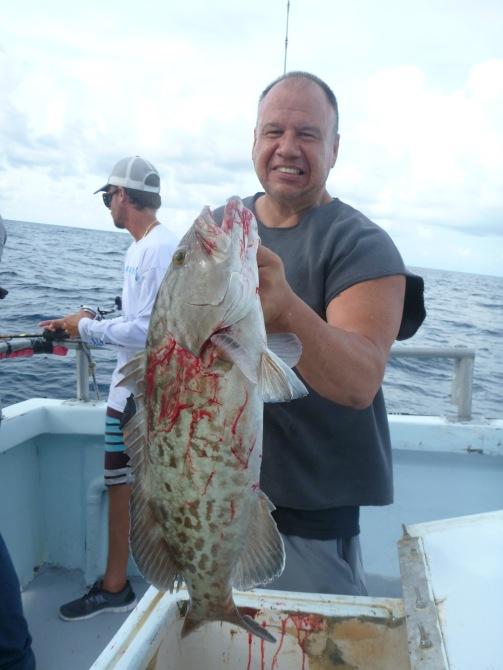 permitchaser's gag grouper