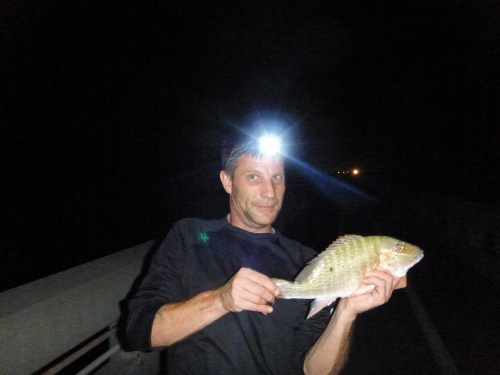 Ron's Mutton Snapper