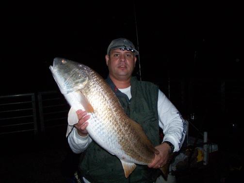 Redfish Sebastian Inlet-2