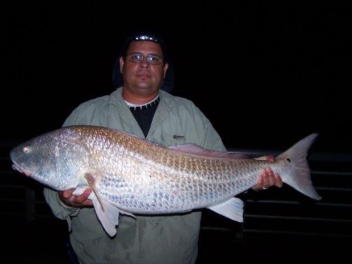 Redfish Sebastian Inlet