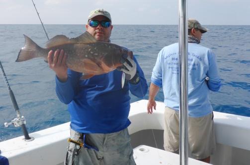 herberts-red-grouper-4.jpg?w=503&h=334