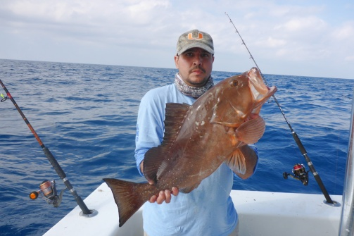 Nilson's Red Grouper 3