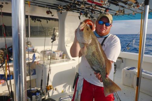 rorys-gag-grouper.jpg?w=503&h=336