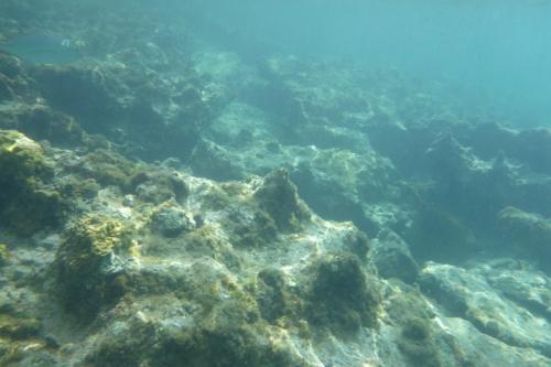 Cayman Islands014
