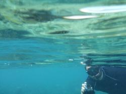 Isla Roatan Reef & Island005