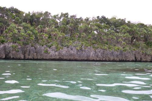 Isla Roatan Reef & Island016