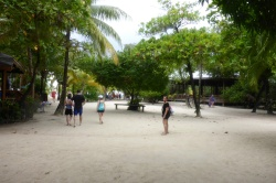 Isla Roatan Reef & Island024