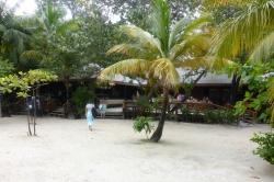 Isla Roatan Reef & Island025