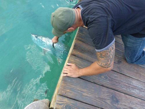 Fishing at Robbies10