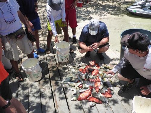 Fishing at Robbies41