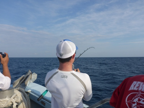 Jared Hooked on a Sailfish
