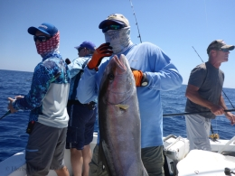Capt. Easy Charter- Happy B-Day with Amberjacks-Vertical Jigging 4-9-16