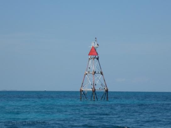 Fishing Capt Easy-5