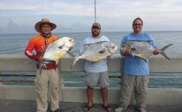 Lazy Permit Fishing in the Florida KeysBridges