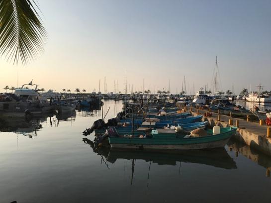 11-2016-puerto-vallarta06