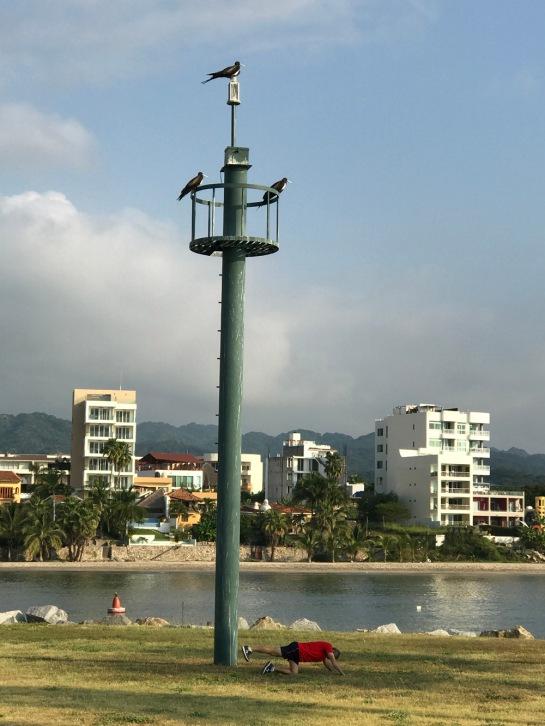11-2016-puerto-vallarta08