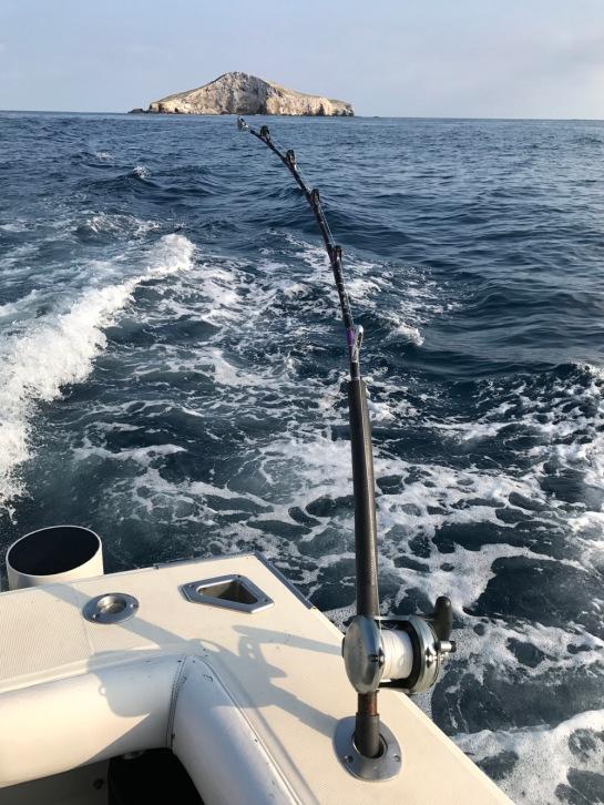 11-2016-puerto-vallarta31