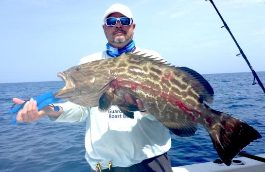 MarquesasRebbeca201839Black grouper