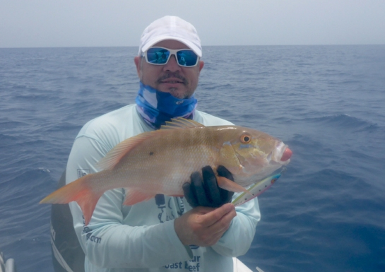 MarquesasRebbeca201854mutton snapper