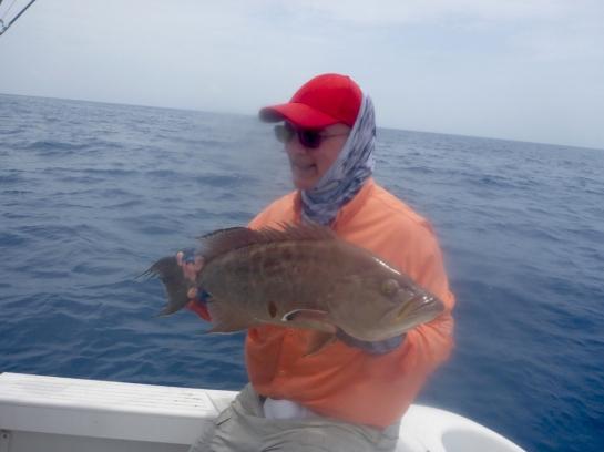 MarquesasRebbeca2018scamp grouper