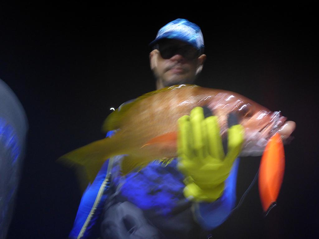 Cudaman Adventures , fishing report, fishing photos